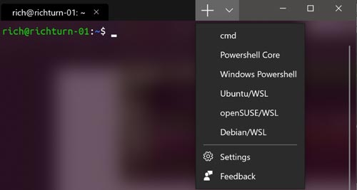 Open Source Windows Terminal and Linux Kernels for Windows Unveiled
